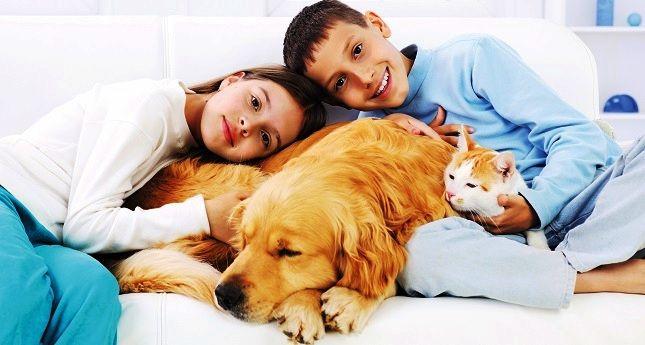 Як боротися з алергією на тварин у дітей?
