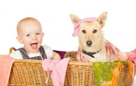 дитина і біла собака