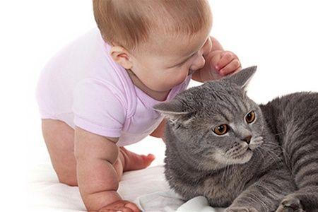 малюк і кішка