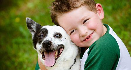 Домашні тварини для маленьких дітей: як вибрати?