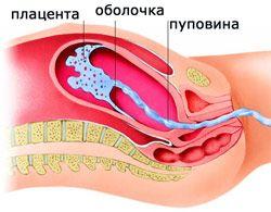 Нормальна товщина плаценти при вагітності