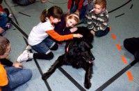 дитина боїться собаки 3