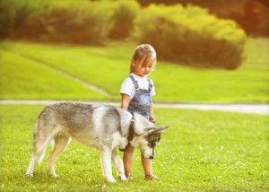 Собаки і діти