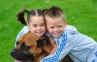 Собака для сім`ї з дітьми