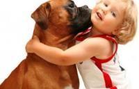 Тварини для дітей